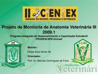 Monitor:  Felipe Silva Sento Sé Orientador: Prof. Dr. Marcelo Domingues de Faria