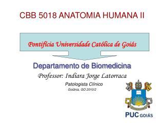 CBB 5018 ANATOMIA HUMANA II