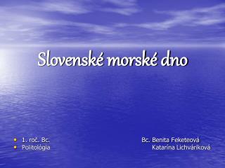 Slovenské morské dno