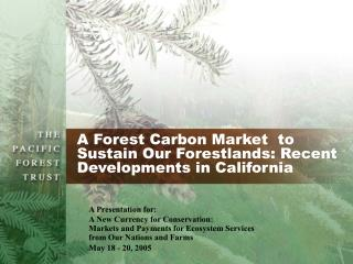 A Forest Carbon Market  to  Sustain Our Forestlands: Recent Developments in California