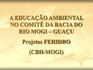 A EDUCAÇÃO AMBIENTAL NO COMITÊ DA BACIA DO RIO MOGI – GUAÇU Projetos FEHIDRO (CBH-MOGI)
