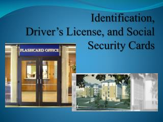 Identification,  Driver's License, and Social Security Cards