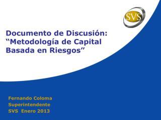 """Documento de Discusión:  """"Metodología de Capital Basada en Riesgos"""""""
