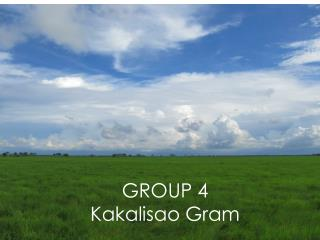 GROUP 4 Kakalisao Gram