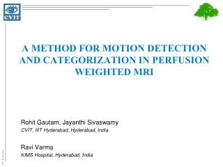 A method for motion Detection and Categorization in perfusion weighted MRI