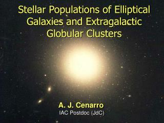 Stellar Populations of Elliptical Galaxies and Extragalactic Globular Clusters
