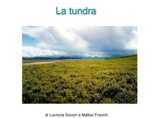 La tundra