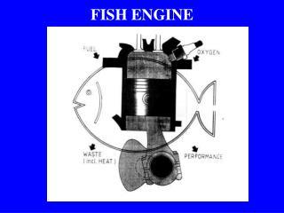 FISH ENGINE
