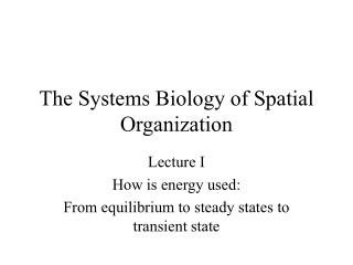 The Systems Biology of Spatial Organization