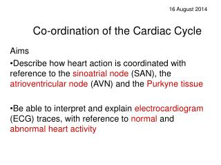 Co-ordination of the Cardiac Cycle
