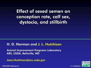 Effect of sexed semen on conception rate, calf sex,  dystocia, and stillbirth