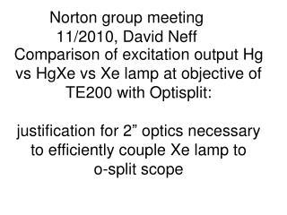 Norton group meeting 11/2010, David Neff