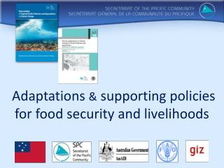Adaptations  &  supporting policies for  food security and livelihoods