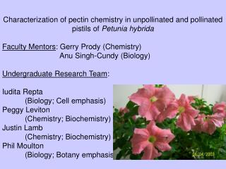 Characterization of pectin chemistry in unpollinated and pollinated pistils of  Petunia hybrida