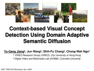 Context-based Visual Concept Detection Using Domain Adaptive Semantic Diffusion