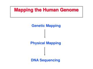 Mapping the Human Genome