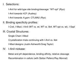 """I.  Selections: I-AniI for wild-type site binding/cleavage: """"WT-opt"""" (Ryo)"""