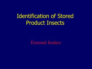 Identification of Stored Product Insects