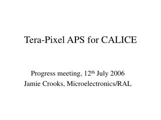 Tera-Pixel APS for CALICE