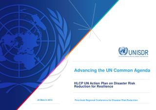 Advancing the UN Common Agenda