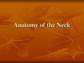 Anatomy of the Neck