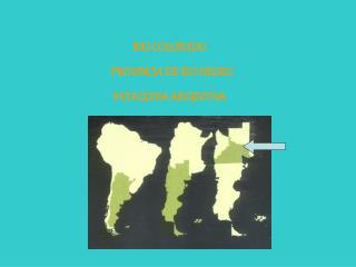 RIO COLORADO    PROVINCIA DE RIO NEGRO PATAGONIA ARGENTINA