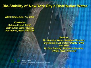 Bio-Stability of New York City's Distribution Water