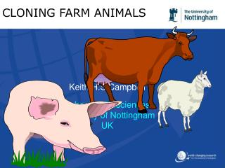 CLONING FARM ANIMALS