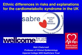 Ethnic differences in risks and explanations for the cardiometabolic syndrome in the UK