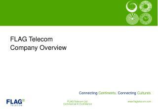 FLAG Telecom Company Overview