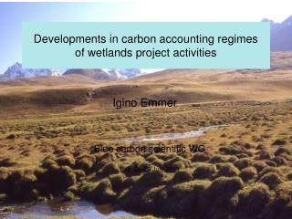 Developments in carbon accounting regimes  of wetlands project activities