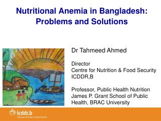 Nutritional Anemia in Bangladesh:  Problems and Solutions