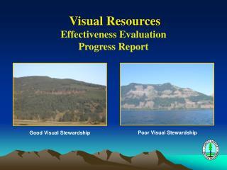 Visual Resources Effectiveness Evaluation Progress Report