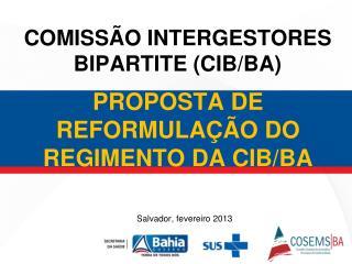 PROPOSTA DE REFORMULAÇÃO DO REGIMENTO DA CIB/BA