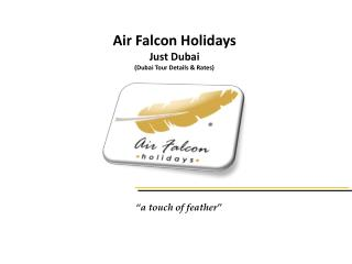 Air Falcon Holidays Just Dubai (Dubai Tour Details & Rates)