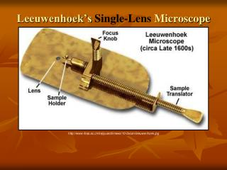 Leeuwenhoek's  Single-Lens M icroscope
