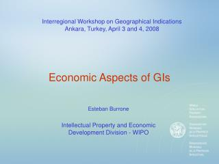 Economic Aspects of GIs