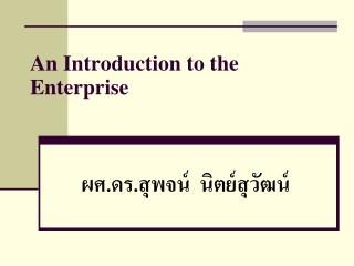 An Introduction to the Enterprise