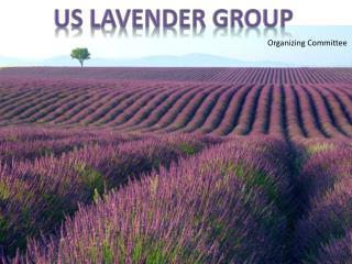 US Lavender  Group