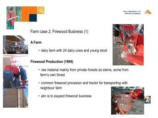 Farm case 2: Firewood Business (1)