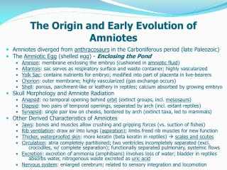 The Origin and Early Evolution of Amniotes