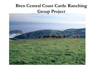 Bren Central Coast Cattle Ranching Group Project