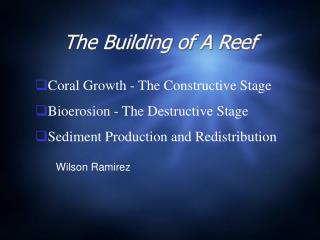 The Building of A Reef