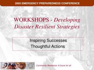 WORKSHOPS -  Developing Disaster Resilient Strategies