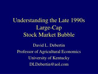 Understanding the Late 1990s Large-Cap Stock Market Bubble