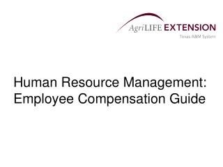 Human Resource Management: Employee Compensation Guide