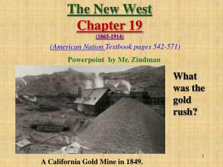 The New West  Chapter 19 (1865-1914)