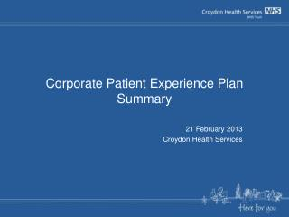 Corporate Patient Experience Plan Summary