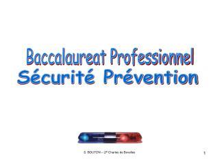 Baccalaureat Professionnel