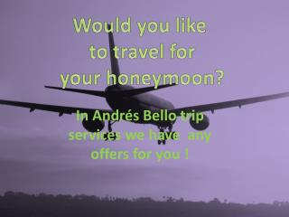 In Andrés Bello trip services we have  any offers for you !